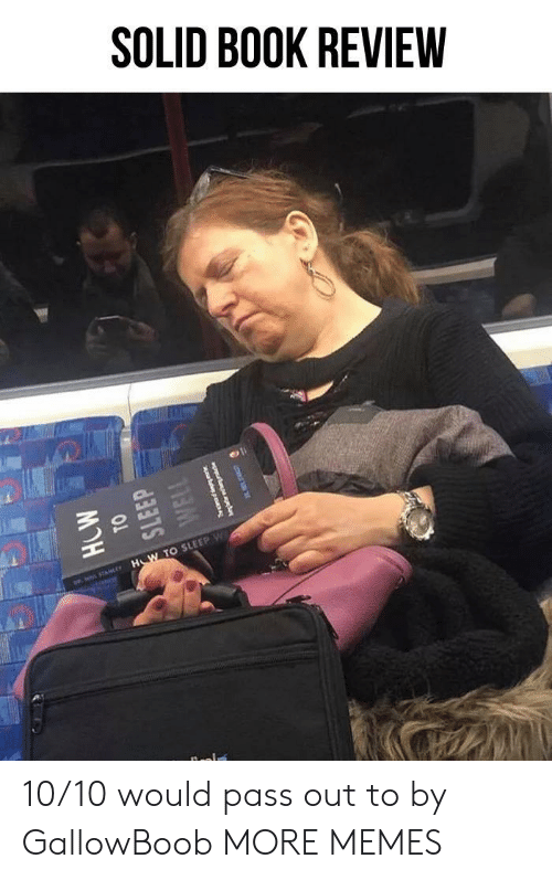 pass out: SOLID BOOK REVIEW  TO SLEEP w 10/10 would pass out to by GallowBoob MORE MEMES