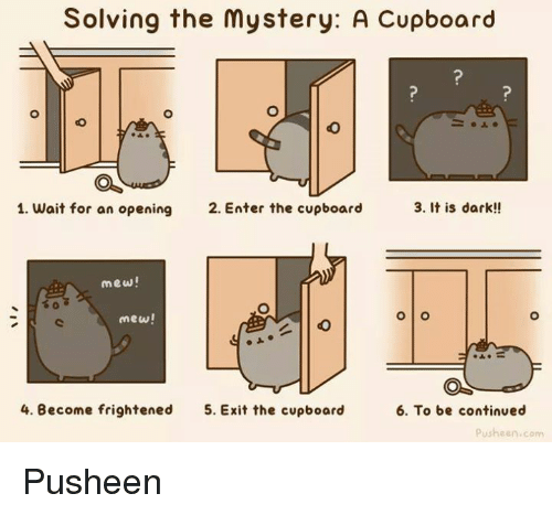 Memes, Frightening, and Mystery: Solving the mystery: A Cupboard  3. It is dark!!  1. wait for an opening  2. Enter the cupboard  mew!  O O  mew!  4. Become frightened  5. Exit the cupboard  6. To be continued  Pusheen com Pusheen