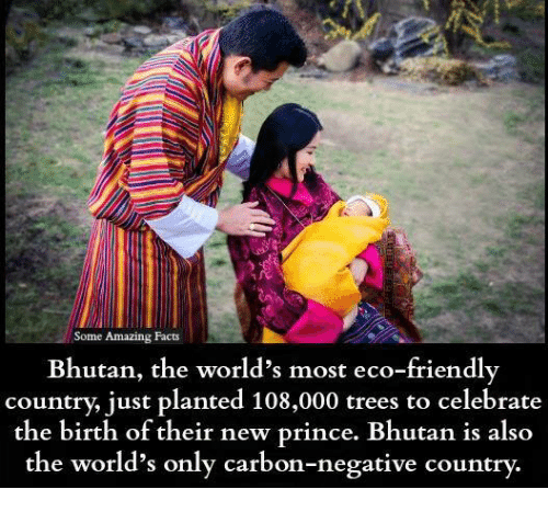 Facts, Memes, and Prince: Some Amazing  Facts  Bhutan, the world's most eco-friendly  country, just planted 108,000 trees to celebrate  the birth of their new prince. Bhutan is also  the world's only carbon-negative country
