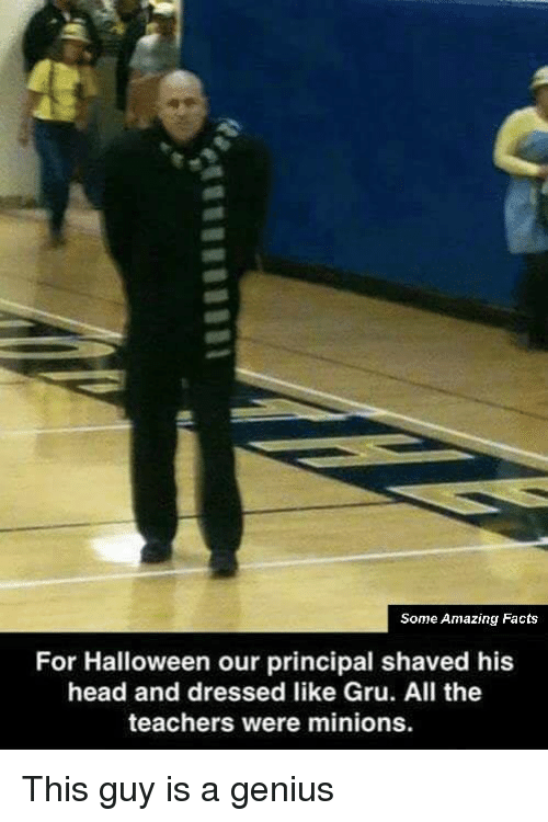 Gru: Some Amazing Facts  For Halloween our principal shaved his  head and dressed like Gru. All the  teachers were minions. This guy is a genius