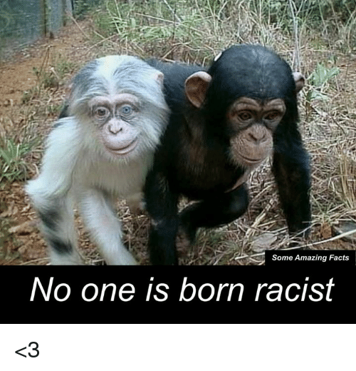No One Is Born Racist: Some Amazing Facts  No one is born racist <3