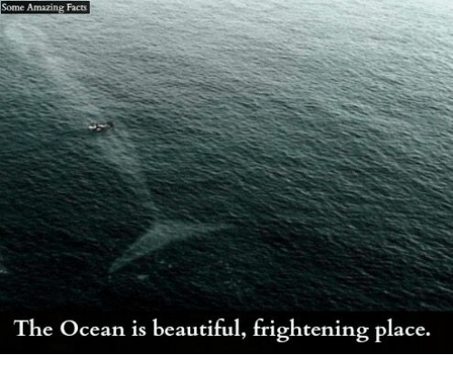 amazing facts: Some Amazing Facts  The Ocean is beautiful, frightening place.