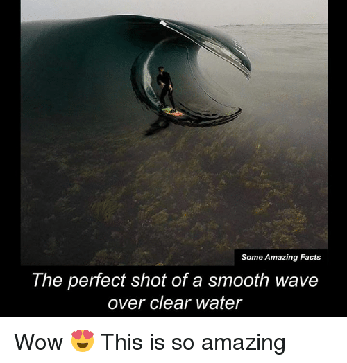 clear water: Some Amazing Facts  The perfect shot of a smooth wave  over clear water Wow 😍 This is so amazing