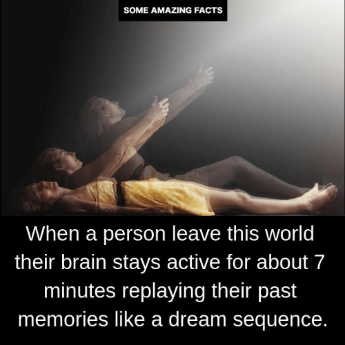 sequence: SOME AMAZING FACTS  When a person leave this world  their brain stays active for about 7  minutes replaying their past  memories like a dream sequence.