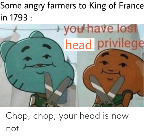 privilege: Some angry farmers to King of France  in 1793 :  +you'have lost  head privilege  w/erd Chop, chop, your head is now not