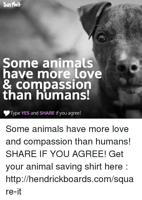 Memes, 🤖, and Squared: Some animals  have more love  & Compassion  than humans!  Type YES and  SHARE if you agree! Some animals have more love and compassion than humans! SHARE IF YOU AGREE!   Get your animal saving shirt here : http://hendrickboards.com/square-it