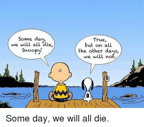 Memes, 🤖, and Snoo: Some day  we will al  aie  Snoo  True,  but on LL  the other days,  we will not. Some day, we will all die.