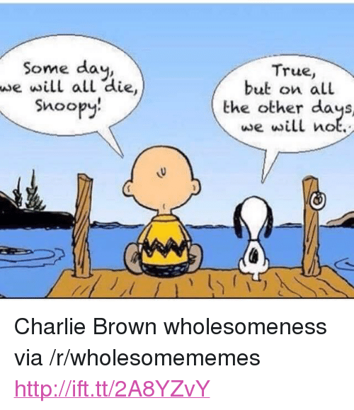 """Snoopy: Some day,  we will all die  Snoopy.  True,  but on all  the other days  we will not. <p>Charlie Brown wholesomeness via /r/wholesomememes <a href=""""http://ift.tt/2A8YZvY"""">http://ift.tt/2A8YZvY</a></p>"""