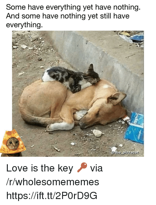 the key: Some have everything yet have nothing  And some have nothing yet still have  everything  othe pizzacat Love is the key 🔑 via /r/wholesomememes https://ift.tt/2P0rD9G