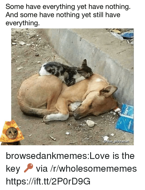 the key: Some have everything yet have nothing  And some have nothing yet still have  everything  othe pizzacat browsedankmemes:Love is the key 🔑 via /r/wholesomememes https://ift.tt/2P0rD9G
