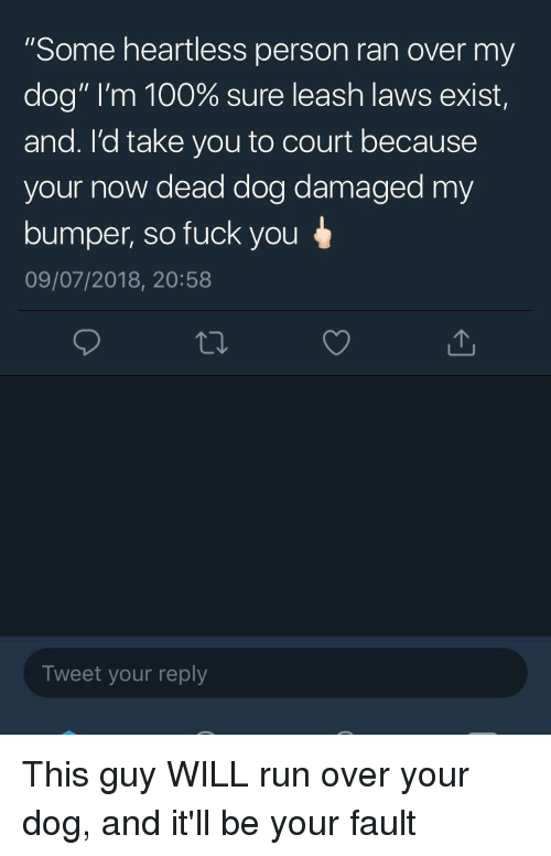 """Anaconda, Fuck You, and Run: """"Some heartless person ran over my  dog"""" I'm 100% sure leash laws exist  and. I'd take you to court because  your now dead dog damaged my  bumper, so fuck you  09/07/2018, 20:58  Tweet your reply"""