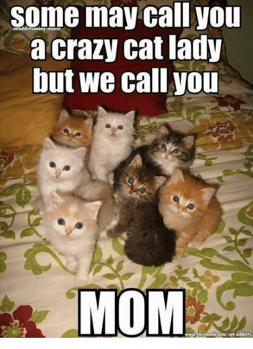 crazy cats: Some may call you  a crazy cat lady  Dut we call you  MOM  www.facebook.com/cat,addicts