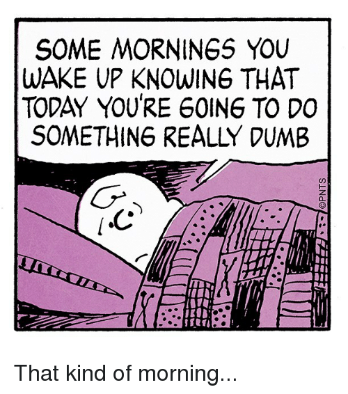 Dumb, Memes, and Today: SOME MORNINGS YOU  WAKE UP KNOWING THAT  TODAY YOURE 60ING TO DO  SOMETHING REALLY DUMB That kind of morning...
