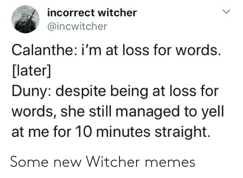 witcher: Some new Witcher memes