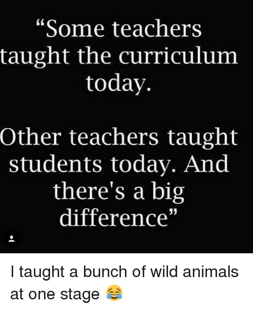 """Memes, 🤖, and Big: """"Some teachers  taught the curriculum  today.  Other teachers taught  students today. And  there's a big  difference"""" I taught a bunch of wild animals at one stage 😂"""