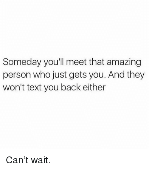Memes, Text, and Amazing: Someday you'll meet that amazing  person who just gets you. And they  won't text you back either Can't wait.