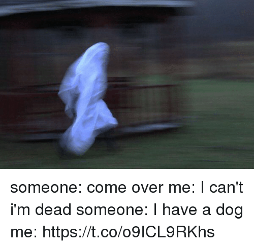 Come Over, Girl Memes, and Dog: someone: come over me: I can't i'm dead someone: I have a dog me: https://t.co/o9ICL9RKhs