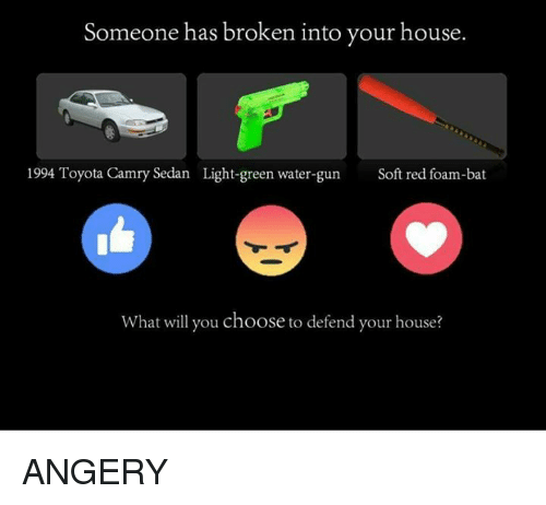 water guns: Someone has broken into your house.  1994 Toyota Camry Sedan Light-green water-gun  Soft red foam-bat  What will you choose to defend your house? ANGERY