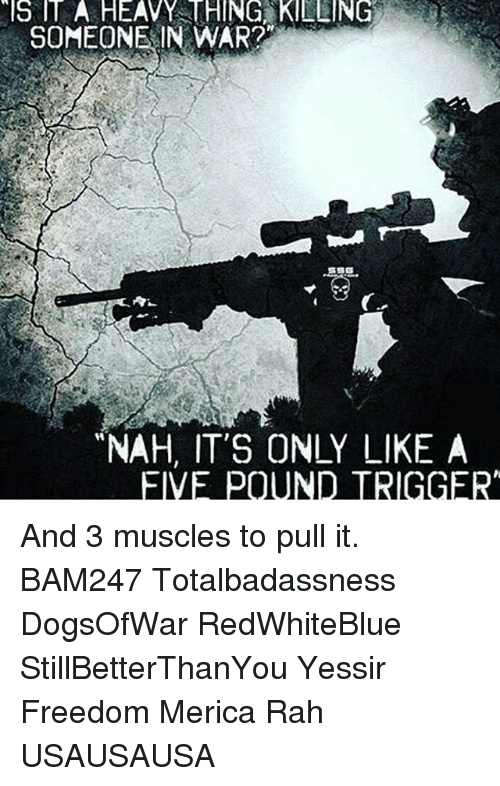 "Memes, 🤖, and Eve: SOMEONE IN WAR?  ""NAH, IT'S ONLY LIKE A  EVE POUND TRIGGER And 3 muscles to pull it. BAM247 Totalbadassness DogsOfWar RedWhiteBlue StillBetterThanYou Yessir Freedom Merica Rah USAUSAUSA"