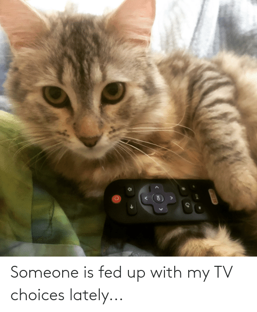 fed up: Someone is fed up with my TV choices lately...
