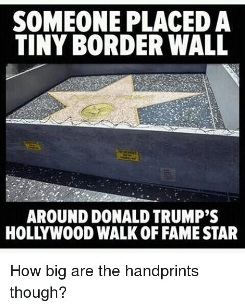 Memes, Star, and Stars: SOMEONE PLACED A  TINY BORDER WALL  AROUND DONALD TRUMP'S  HOLLYWOOD WALK OF FAME STAR How big are the handprints though?