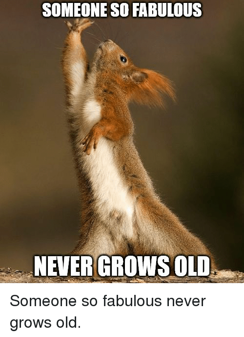 Old, Never, and Fabulous: SOMEONE SO FABULOUS  NEVER GROWS OLD Someone so fabulous never grows old.