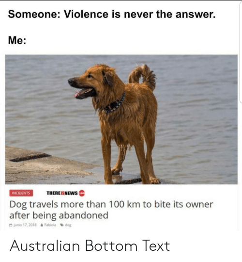 bottom-text: Someone: Violence is never the answer.  Me:  INCIDENTS  THEREISNEWS  Dog travels more than 100 km to bite its owner  after being abandoned  G junio 17, 2018  Fabiola dog Australian Bottom Text