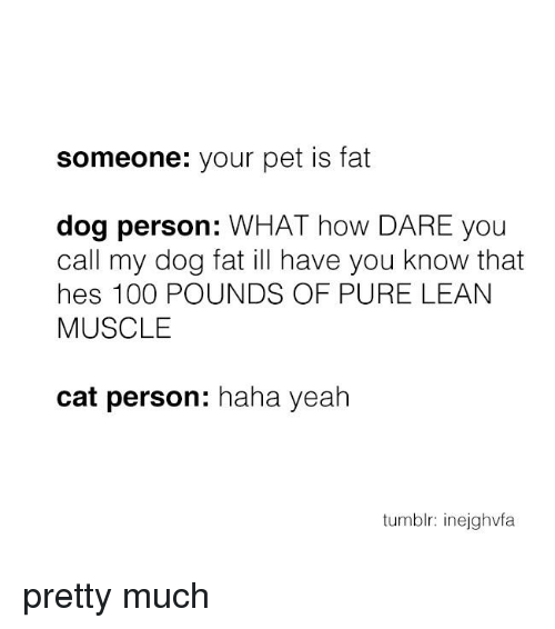 Lean, Memes, and Tumblr: someone: your pet is fat  dog person: WHAT how DARE you  call my dog fat ill have you know that  hes 100 POUNDS OF PURE LEAN  MUSCLE  cat person  haha yeah  tumblr: inejghvfa pretty much