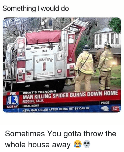 News, Spider, and Home: Something I would do  RD  FOXWHATS TRENDING  MAN KILLING SPIDER BURNS DOWN HOME  REDDING CALIF  LOCAL NEWS  NEW: MAN KILLED AFTER BEING HIT BY CAR IN  PRICE  1233 48· Sometimes You gotta throw the whole house away 😂💀