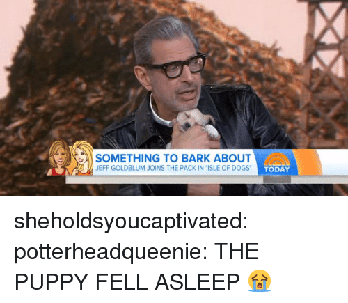 """ogs: SOMETHING TO BARK ABOUT  JEFF GOLDBLUM JOINS THE PACK IN """"ISLE OF D  OGS TODAY sheholdsyoucaptivated:  potterheadqueenie: THE PUPPY FELL ASLEEP 😭"""
