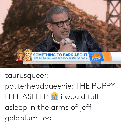 """ogs: SOMETHING TO BARK ABOUT  JEFF GOLDBLUM JOINS THE PACK IN """"ISLE OF D  OGS TODAY taurusqueer:  potterheadqueenie: THE PUPPY FELL ASLEEP 😭 i would fall asleep in the arms of jeff goldblum too"""