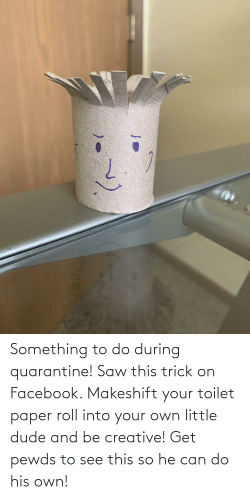toilet-paper-roll: Something to do during quarantine! Saw this trick on Facebook. Makeshift your toilet paper roll into your own little dude and be creative! Get pewds to see this so he can do his own!