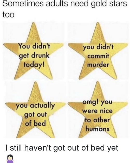 Drunk, Memes, and Omg: Sometimes  adults  need  gold  stars  too  You didn't  get drunk  today!  you didn't  commit  murder  omg! you  you actually  got out  of bed  were nice  to other  humans I still haven't got out of bed yet 🤷🏻♀️