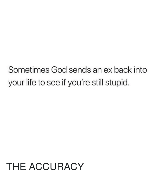 God, Life, and Girl Memes: Sometimes God sends an ex back into  your life to see if you're still stupid. THE ACCURACY