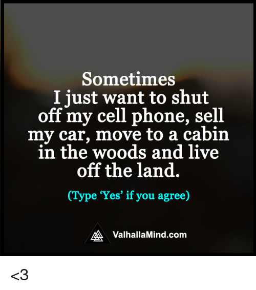 car moving: Sometimes  I just want to shut  off my cell phone, sell  my car, move to a cabin  in the woods and live  off the land  (Type 'Yes' if you agree)  MA Valhalla Mind.com <3