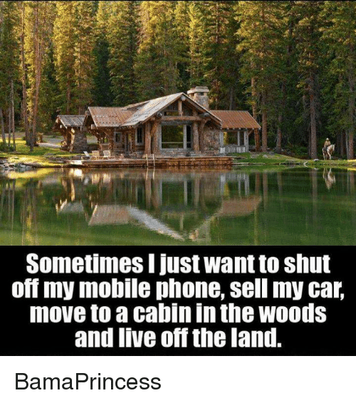 car moving: Sometimes I just Want to shut  off my mobile phone, sell my car,  move to a cabin In the WOOds  and live off the land. BamaPrincess