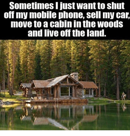 car moving: Sometimes I just Wantto shut  ommy mobile phone, sell my car,  move to a cabin in the WOodS  and live off the land.