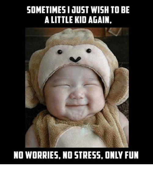 Funny Meme About Stress : Best memes about worries