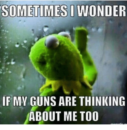 [Image: sometimes-i-wonder-if-my-guns-are-thinki...463739.png]