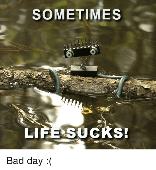 life sucks: SOMETIMES  LIfE SUCKS Bad day :(