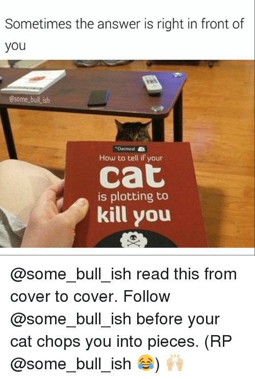 Memes, 🤖, and Chopped: Sometimes the answer is right in front of  you  @some bull ish  Oatmeal  How to tell if your  Cat  is plotting to  kill you @some_bull_ish read this from cover to cover. Follow @some_bull_ish before your cat chops you into pieces. (RP @some_bull_ish 😂) 🙌🏼