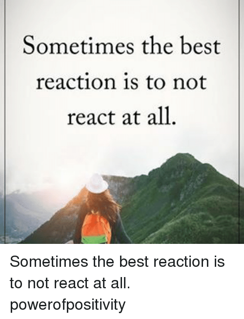 Best Reaction: Sometimes the best  reaction is to not  react at all Sometimes the best reaction is to not react at all. powerofpositivity