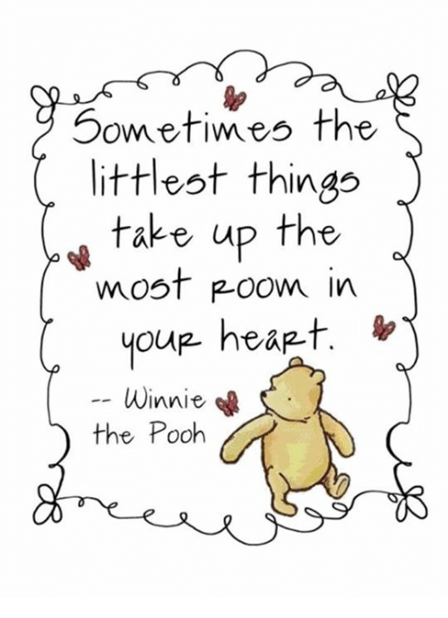 Memes, Ups, and Winnie the Pooh: Sometimes the  littlest things  take up the  most Room in  you hea -t.  Winnie  the Pooh