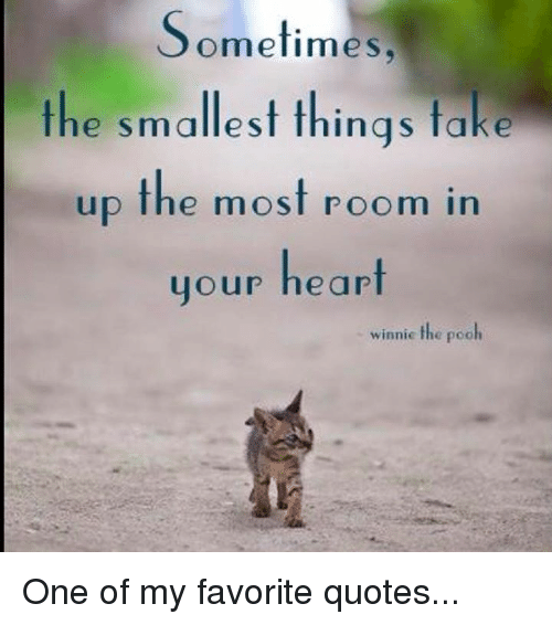 quots: Sometimes  the smallest things take  up the most room in  your heart  winnie the pooh One of my favorite quotes...