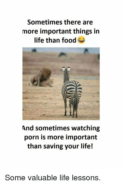 Food, Funny, and Life: Sometimes there are  more important things in  life than food  And sometimes watching  porn is more important  than saving your life! Some valuable life lessons.
