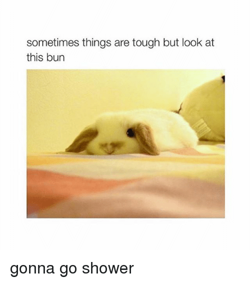 Shower, Girl Memes, and Tough: sometimes things are tough but look at  this bun gonna go shower
