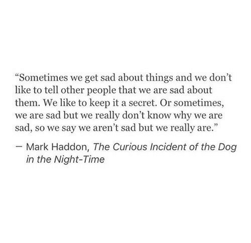 """incident: """"Sometimes we get sad about things and we don't  like to tell other people that we are sad about  them. We like to keep it a secret. Or sometimes,  we are sad but we really don't know why we are  sad, so we say we aren't sad but we really are.""""  Mark Haddon, The Curious Incident of the Dog  in the Night-Time"""