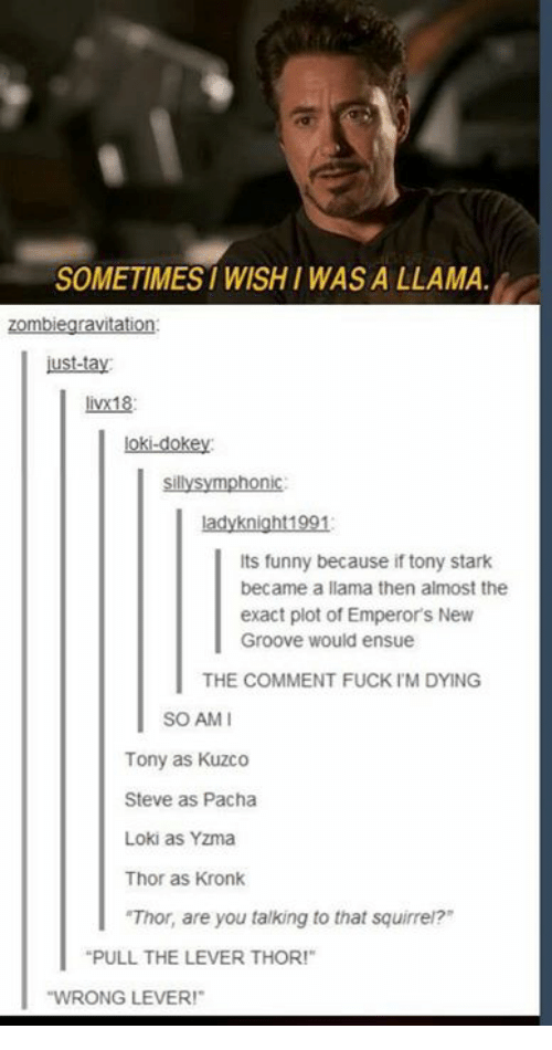 """tony stark: SOMETIMES WISHI WAS A LLAMA  zombiegravitation  ust-tay  livx18  loki-dokey  sillysymphonic  ladyknight1991  Its funny because if tony stark  became a llama then almost the  exact plot of Emperor's New  Groove would ensue  THE COMMENT FUCK IM DYING  SO AMI  Tony as Kuzco  Steve as Pacha  Loki as Yzma  Thor as Kronk  """"Thor, are you talking to that squirrei?  PULL THE LEVER THOR!""""  WRONG LEVER!"""