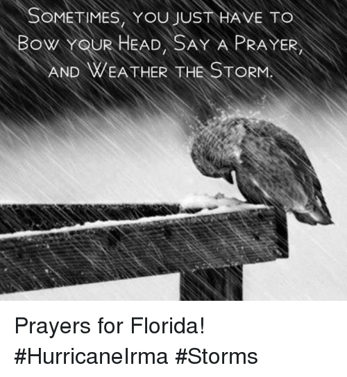 Head, Memes, and Florida: SOMETIMES, YOU JUST HAVE TO  BOW YOUR HEAD, SAY A PRAYER  AND WEA THER THE STORM Prayers for Florida!  #HurricaneIrma #Storms