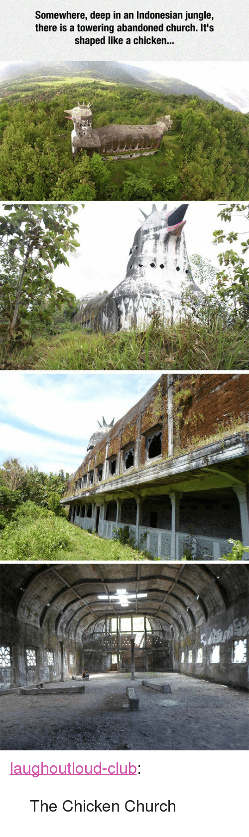 "Chicken Church: Somewhere, deep in an Indonesian jungle,  there is a towering abandoned church. It's  shaped like a chicken.. <p><a href=""http://laughoutloud-club.tumblr.com/post/154114754316/the-chicken-church"" class=""tumblr_blog"">laughoutloud-club</a>:</p>  <blockquote><p>The Chicken Church</p></blockquote>"